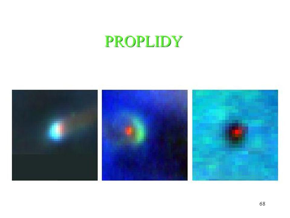 PROPLIDY