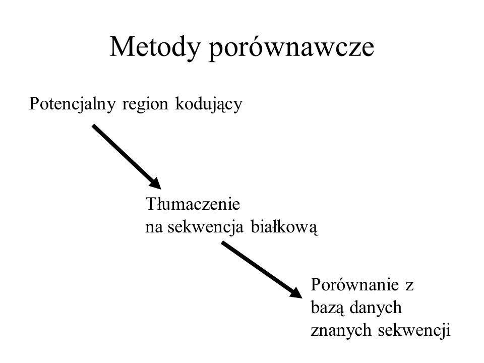 Metody porównawcze Potencjalny region kodujący Tłumaczenie