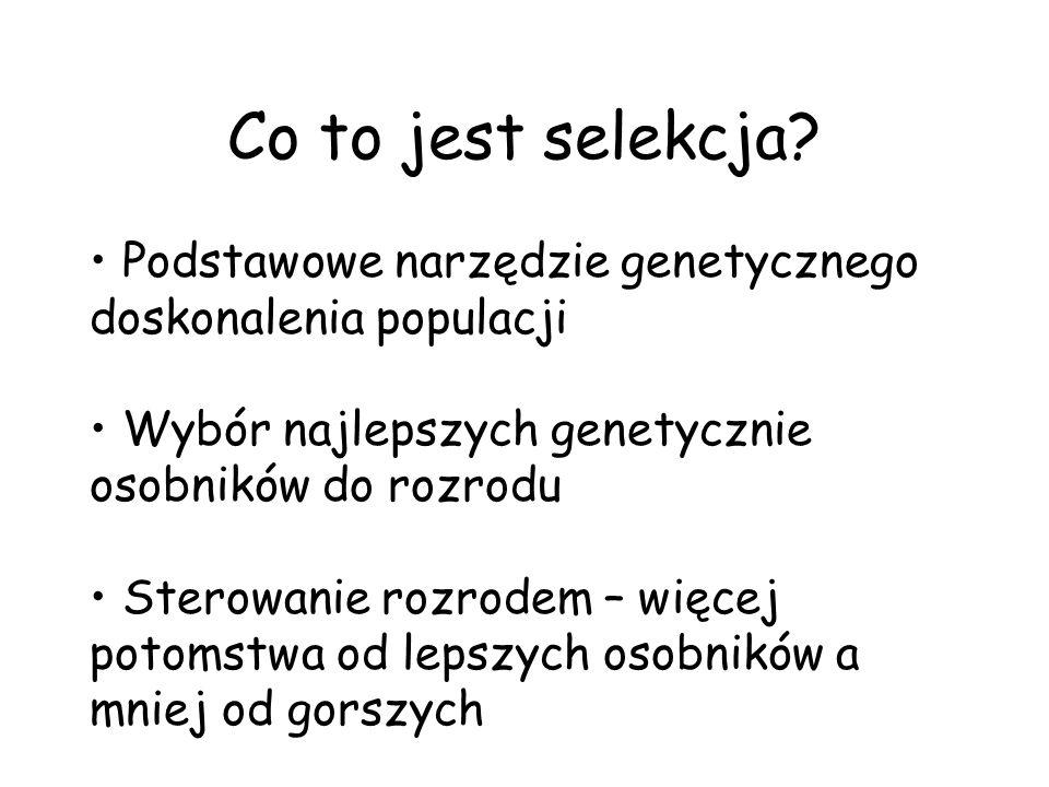 Co to jest selekcja Podstawowe narzędzie genetycznego doskonalenia populacji. Wybór najlepszych genetycznie osobników do rozrodu.
