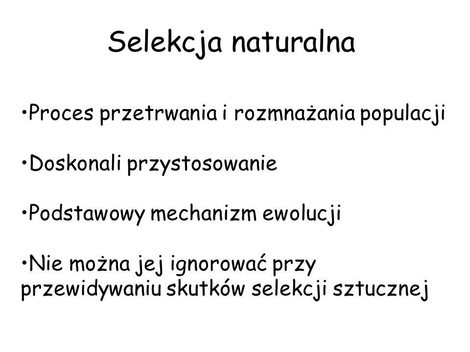 Selekcja naturalna Proces przetrwania i rozmnażania populacji