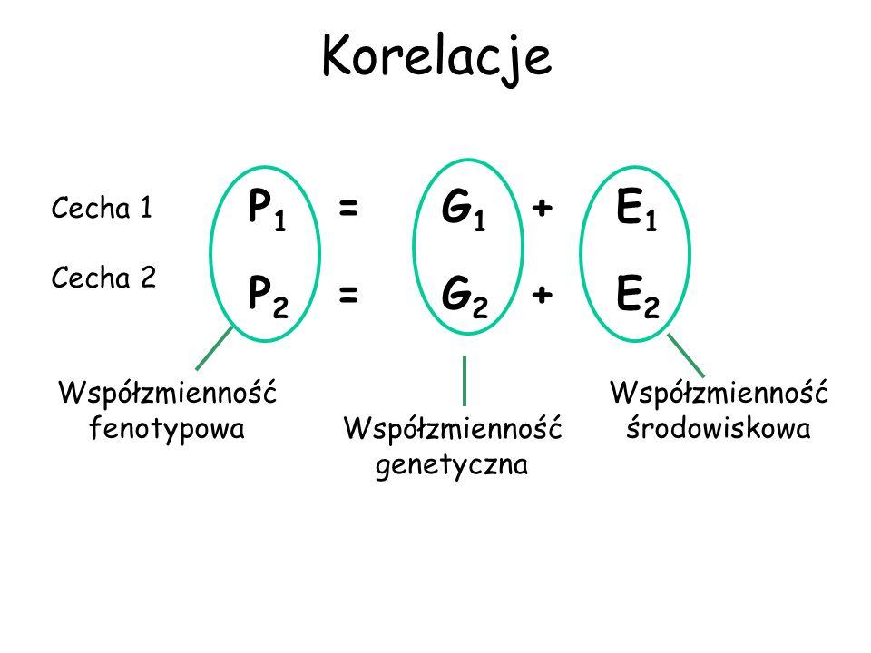 Korelacje P1 = G1 + E1 P2 = G2 + E2 Cecha 1 Cecha 2 Współzmienność