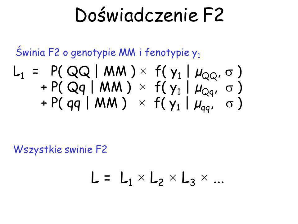 Doświadczenie F2 L1 = P( QQ | MM ) × f( y1 | µQQ,  )