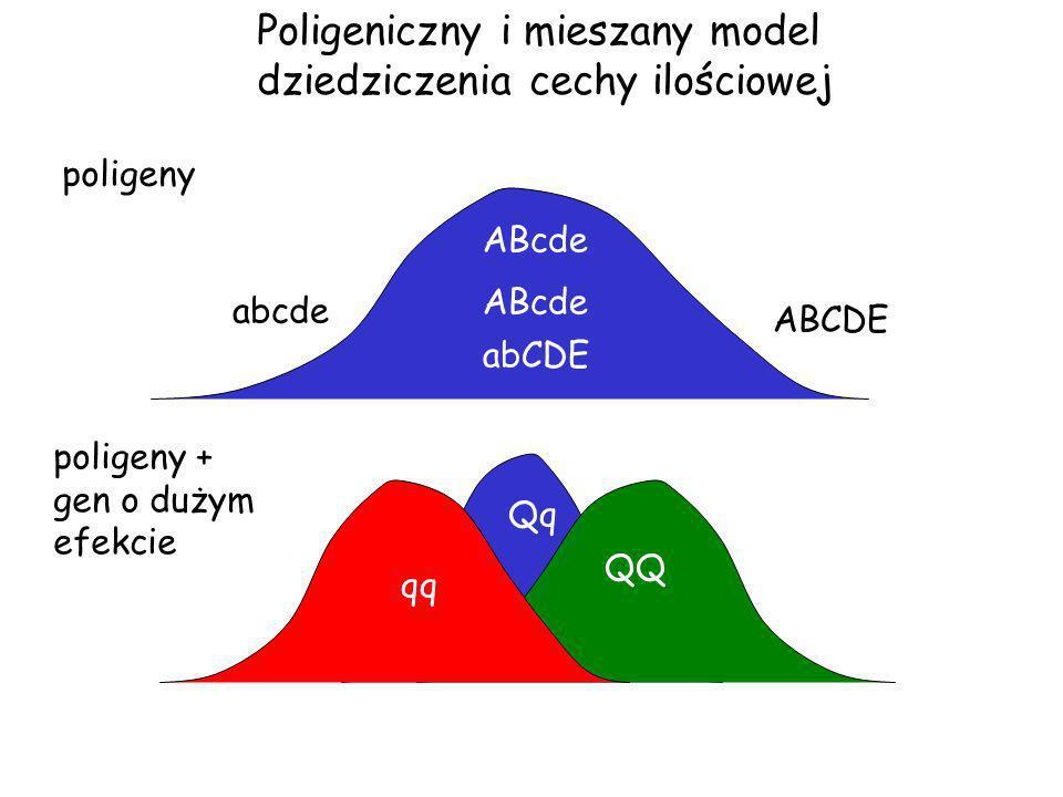 Poligeniczny i mieszany model dziedziczenia cechy ilościowej