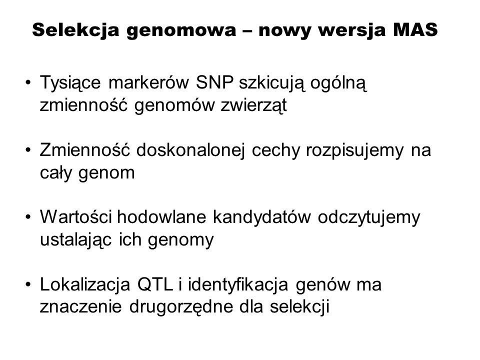 Selekcja genomowa – nowy wersja MAS