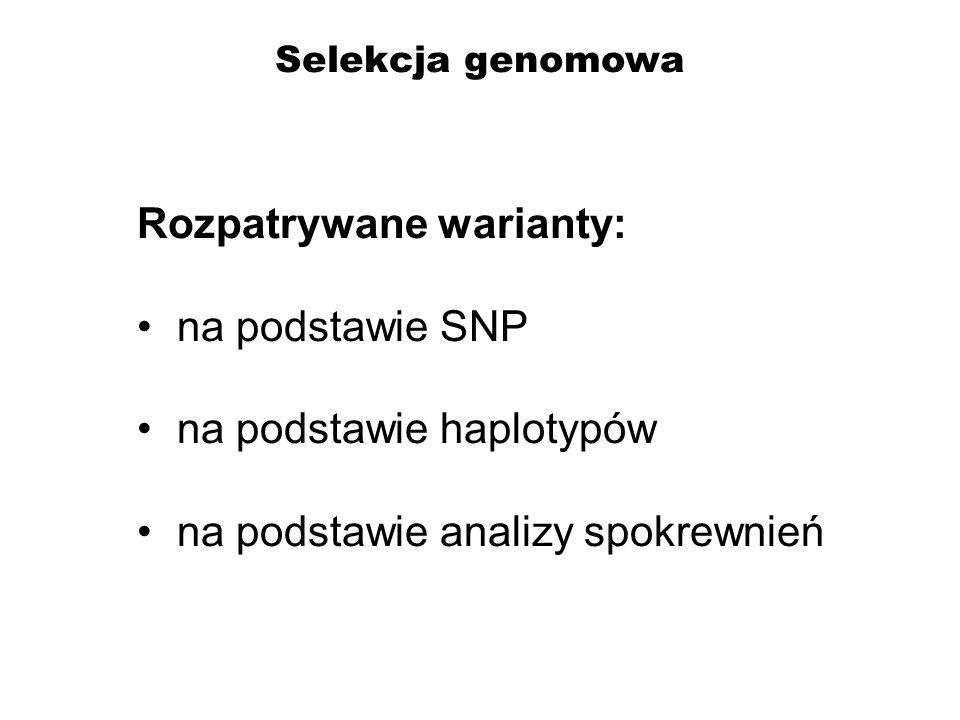 Rozpatrywane warianty: na podstawie SNP na podstawie haplotypów
