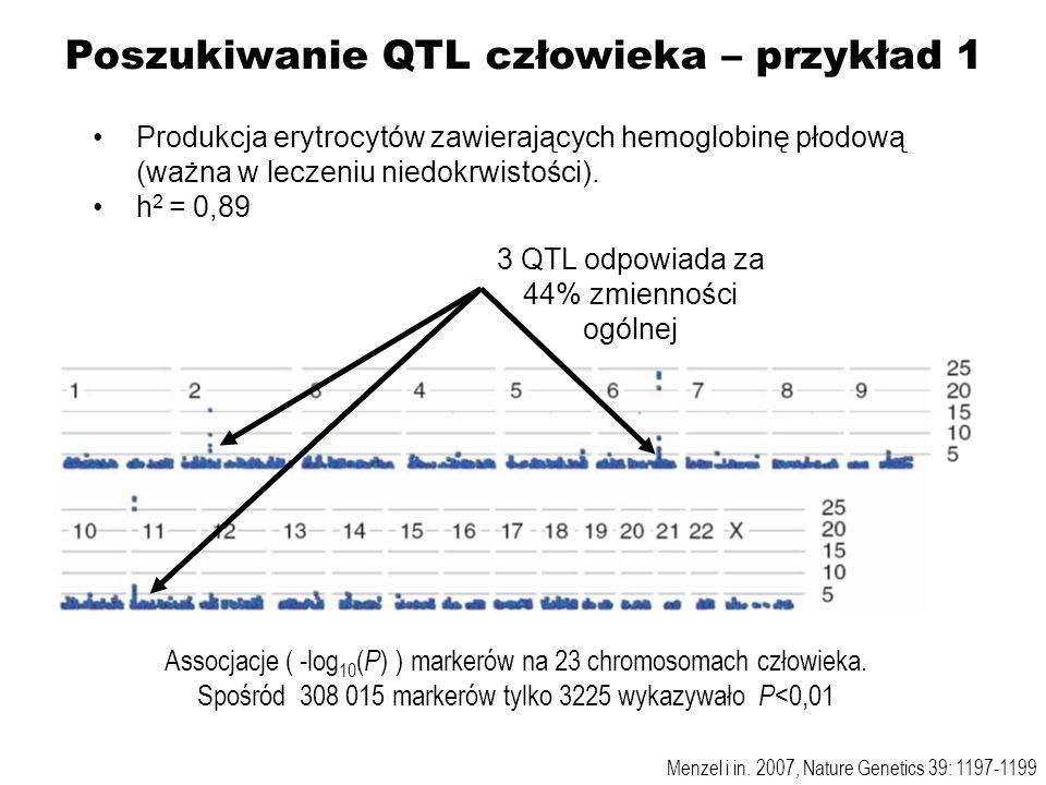 Poszukiwanie QTL człowieka – przykład 1