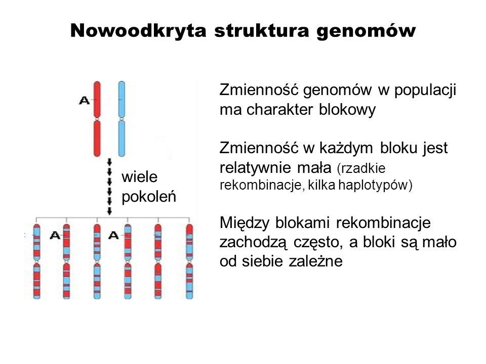 Nowoodkryta struktura genomów