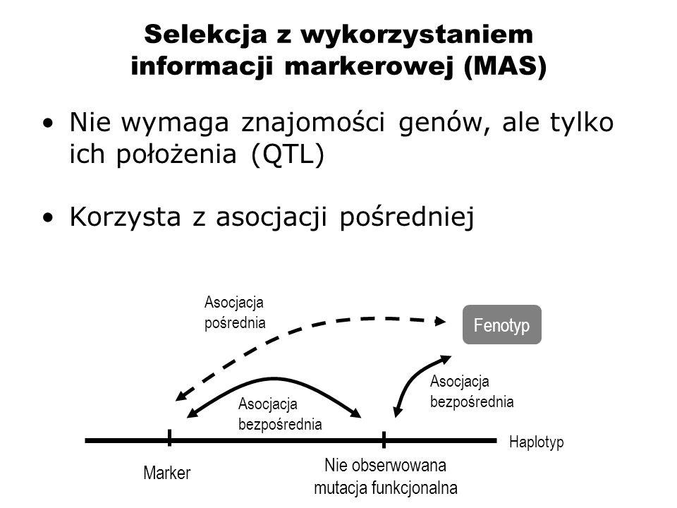 Selekcja z wykorzystaniem informacji markerowej (MAS)