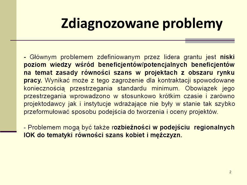 Zdiagnozowane problemy