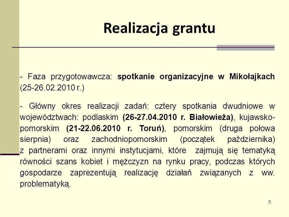 Realizacja grantu - Faza przygotowawcza: spotkanie organizacyjne w Mikołajkach (25-26.02.2010 r.)
