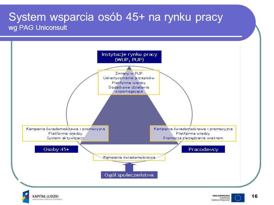 System wsparcia osób 45+ na rynku pracy wg PAG Uniconsult
