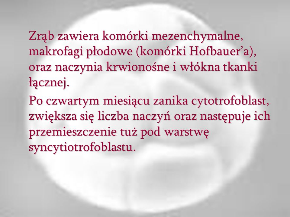 Zrąb zawiera komórki mezenchymalne, makrofagi płodowe (komórki Hofbauer'a), oraz naczynia krwionośne i włókna tkanki łącznej.