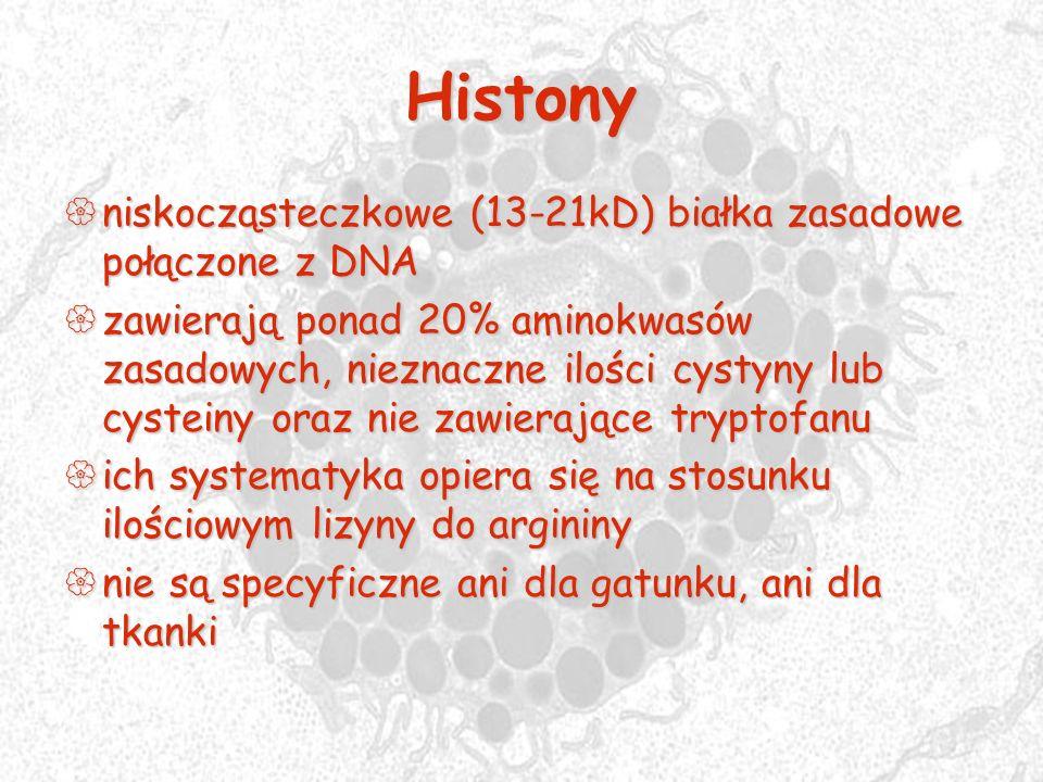 Histony niskocząsteczkowe (13-21kD) białka zasadowe połączone z DNA