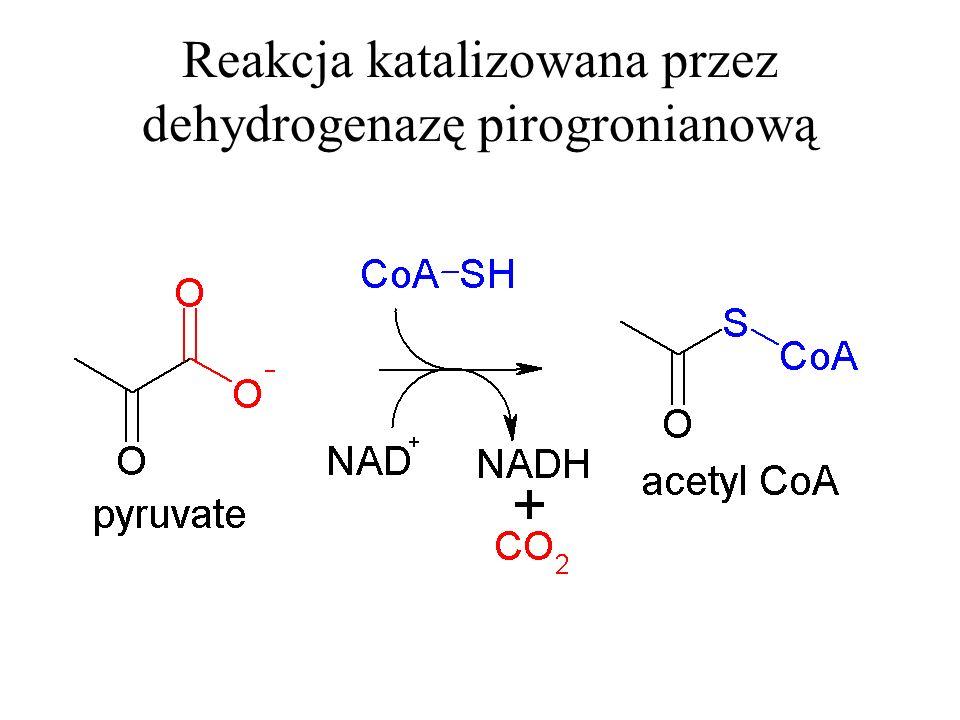Reakcja katalizowana przez dehydrogenazę pirogronianową