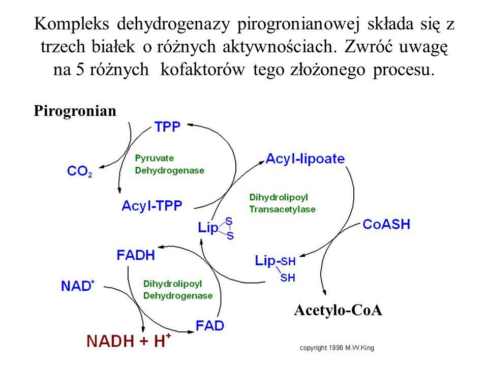 Kompleks dehydrogenazy pirogronianowej składa się z trzech białek o różnych aktywnościach. Zwróć uwagę na 5 różnych kofaktorów tego złożonego procesu.