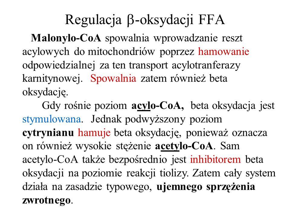 Regulacja -oksydacji FFA