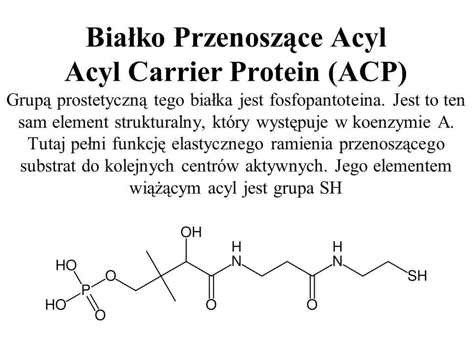 Białko Przenoszące Acyl Acyl Carrier Protein (ACP) Grupą prostetyczną tego białka jest fosfopantoteina.