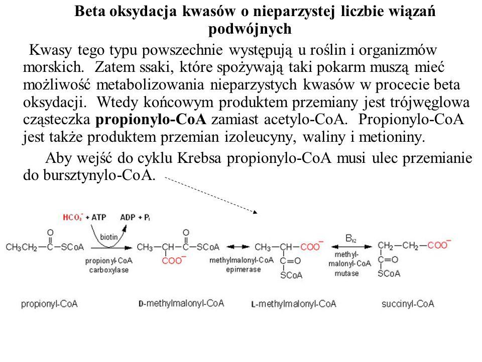 Beta oksydacja kwasów o nieparzystej liczbie wiązań podwójnych