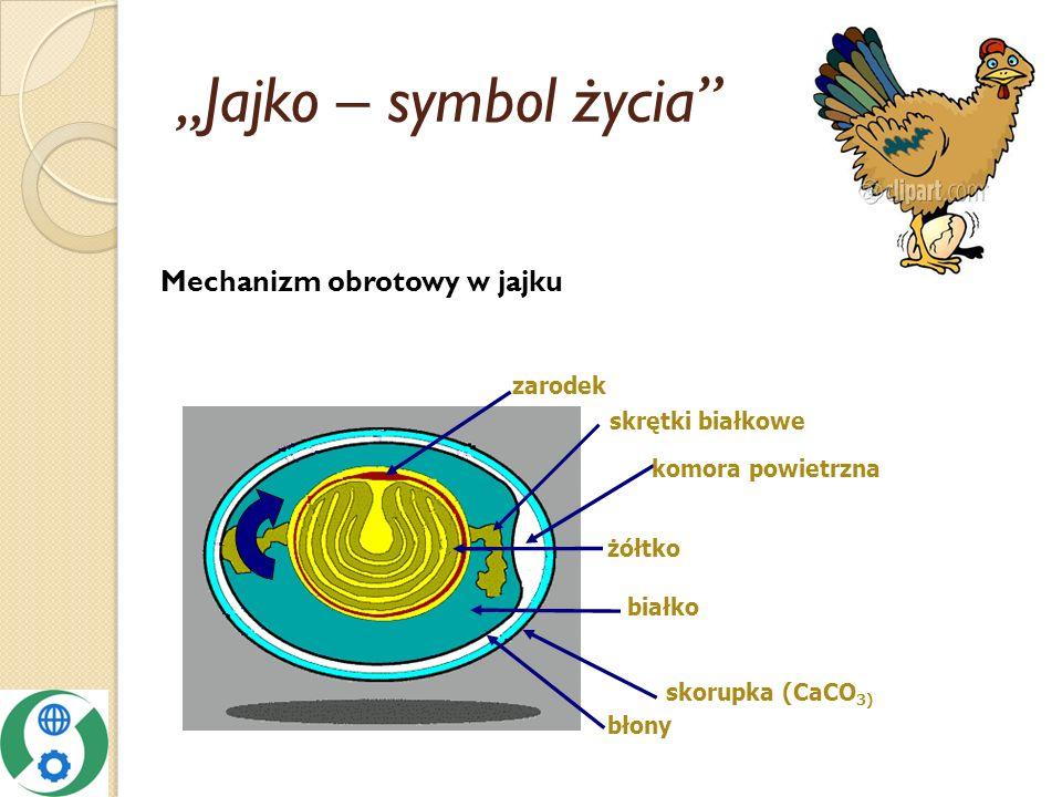 """""""Jajko – symbol życia Mechanizm obrotowy w jajku zarodek"""