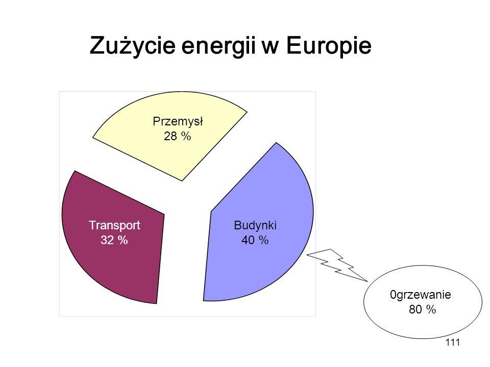 Zużycie energii w Europie