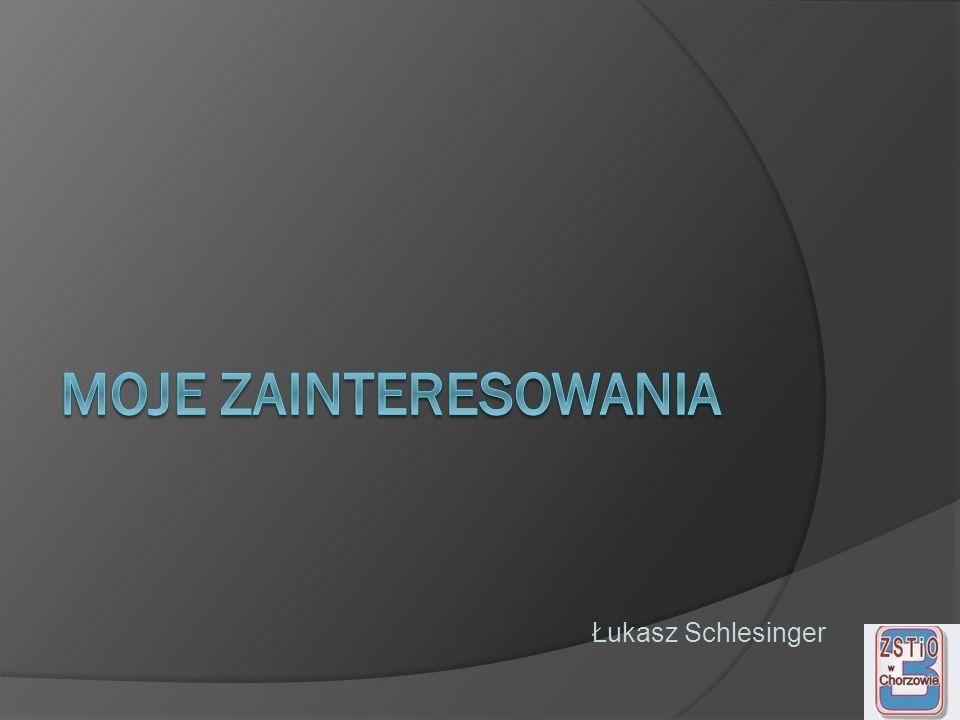 Moje zainteresowania Łukasz Schlesinger