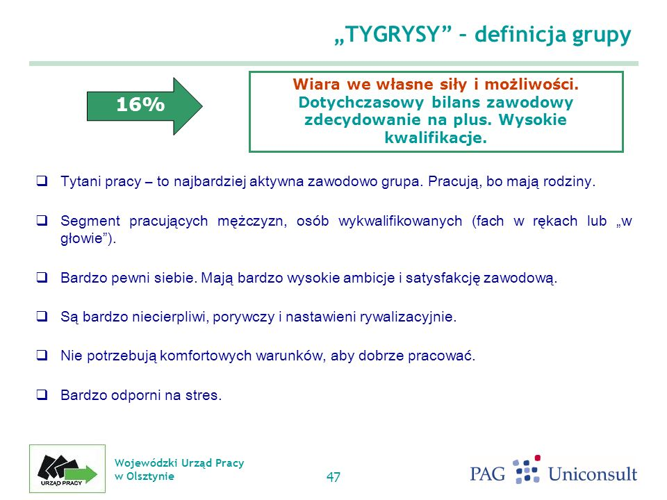 """""""TYGRYSY – definicja grupy"""