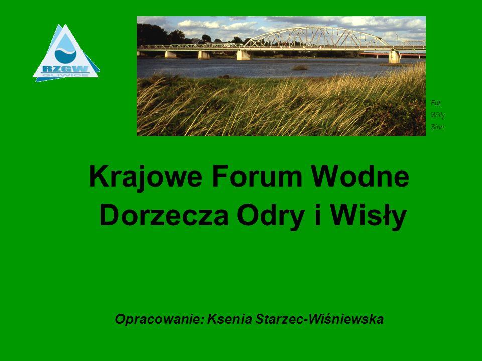 Opracowanie: Ksenia Starzec-Wiśniewska