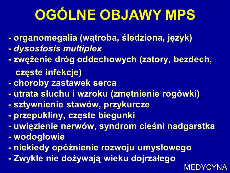 OGÓLNE OBJAWY MPS - organomegalia (wątroba, śledziona, język) - dysostosis multiplex - zwężenie dróg oddechowych (zatory, bezdech,