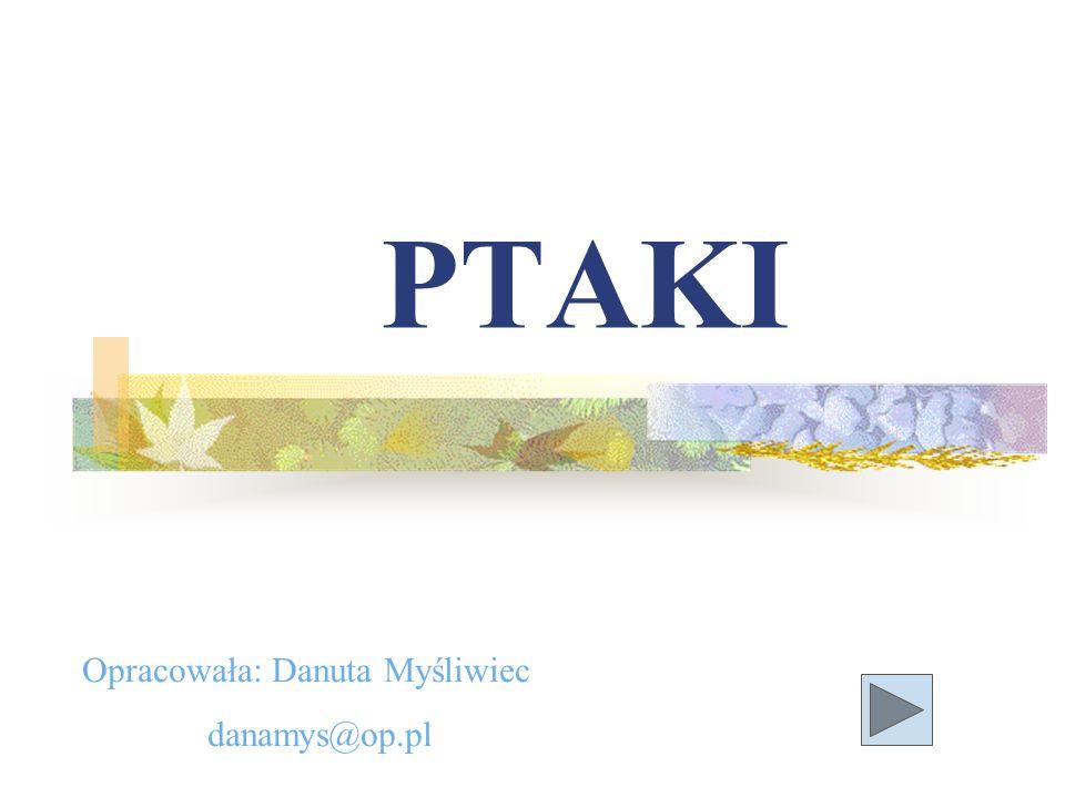 PTAKI Opracowała: Danuta Myśliwiec danamys@op.pl