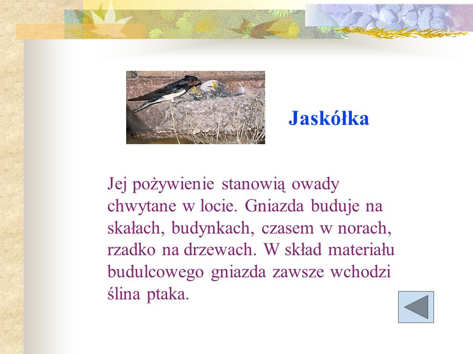 Jaskółka