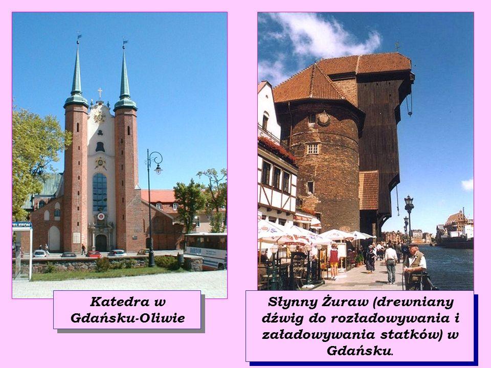 Katedra w Gdańsku-Oliwie