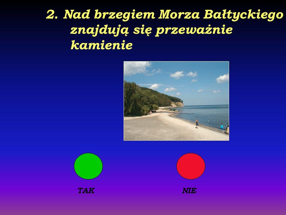 2. Nad brzegiem Morza Bałtyckiego znajdują się przeważnie kamienie