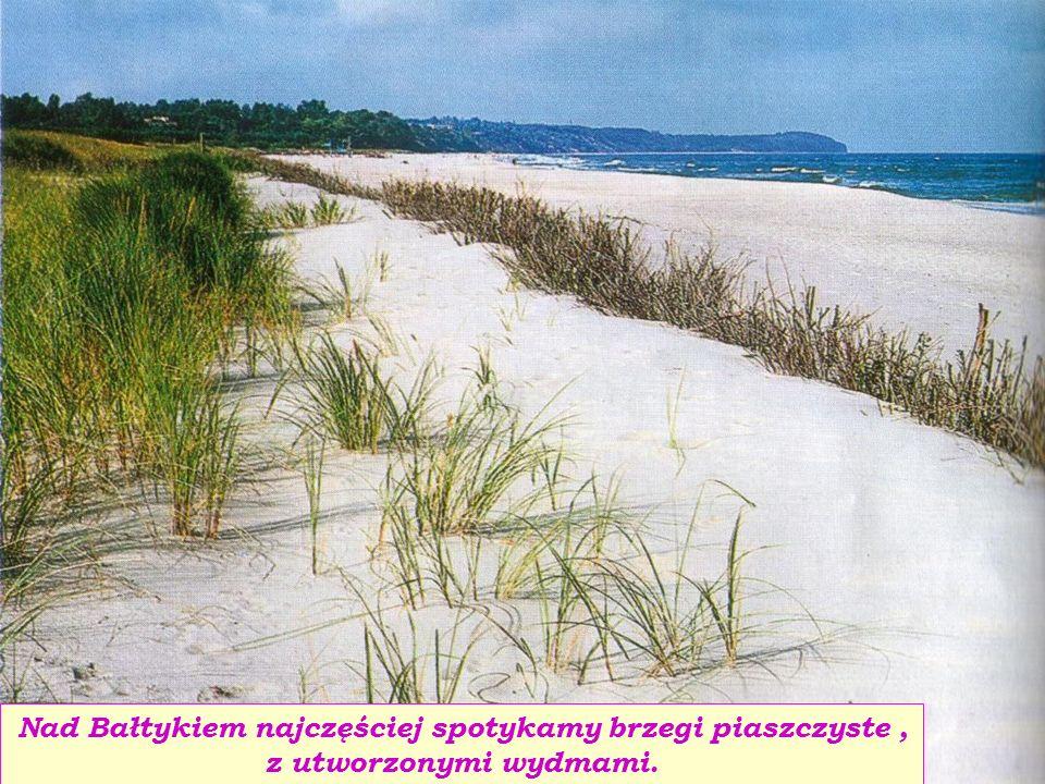 Nad Bałtykiem najczęściej spotykamy brzegi piaszczyste , z utworzonymi wydmami.