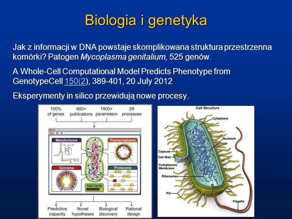 Biologia i genetyka Jak z informacji w DNA powstaje skomplikowana struktura przestrzenna komórki Patogen Mycoplasma genitalium, 525 genów.