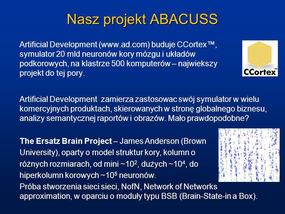Nasz projekt ABACUSS