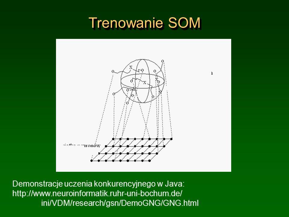 Trenowanie SOM Demonstracje uczenia konkurencyjnego w Java: http://www.neuroinformatik.ruhr-uni-bochum.de/ ini/VDM/research/gsn/DemoGNG/GNG.html.