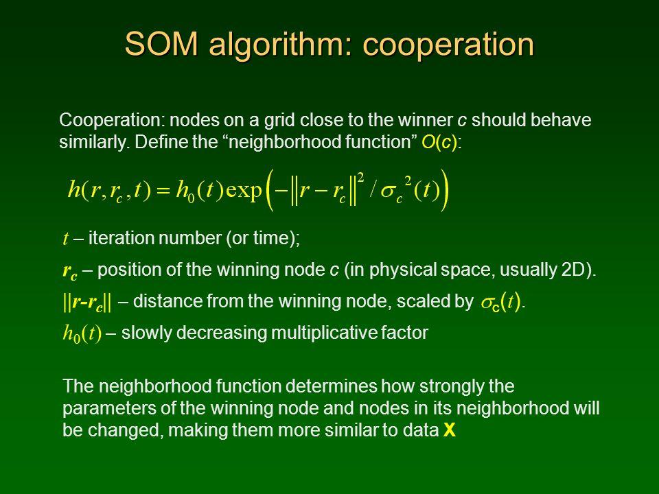 SOM algorithm: cooperation