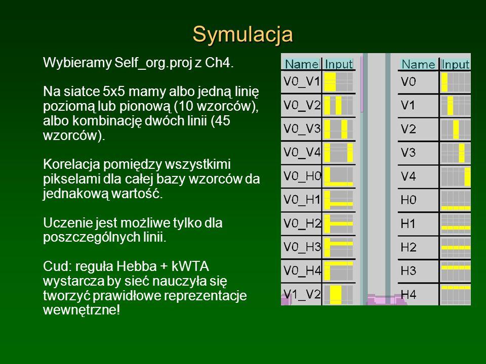 Symulacja Wybieramy Self_org.proj z Ch4.