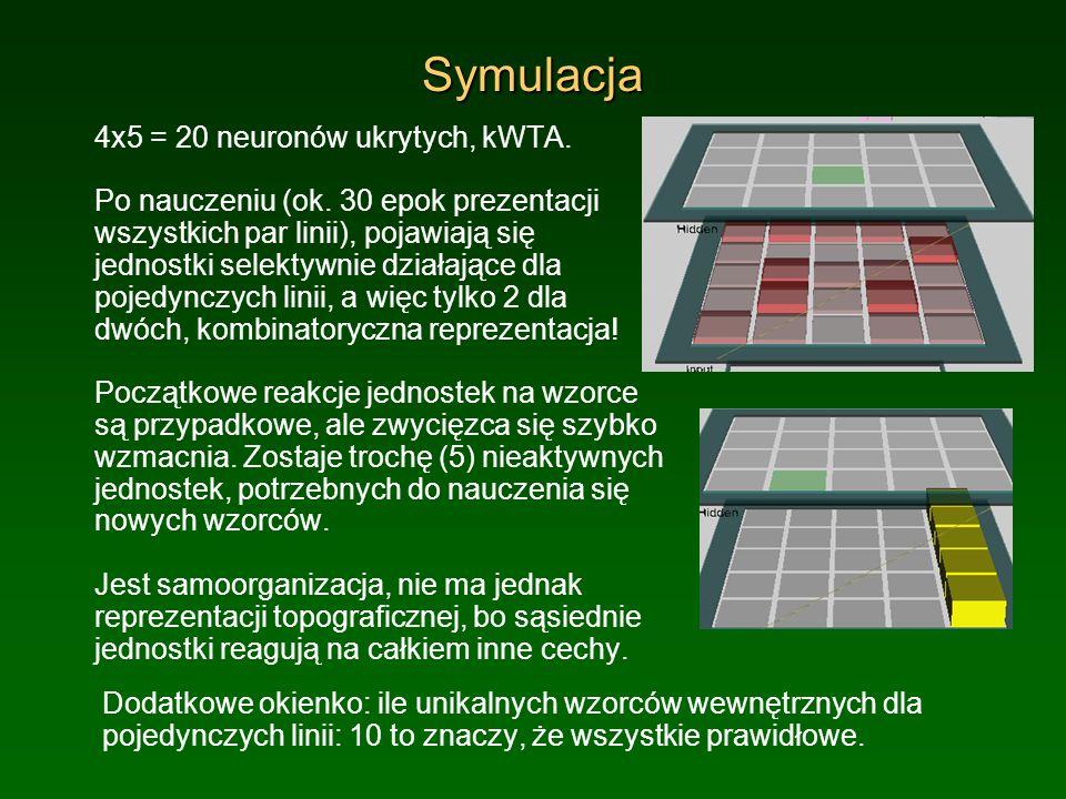 Symulacja 4x5 = 20 neuronów ukrytych, kWTA.