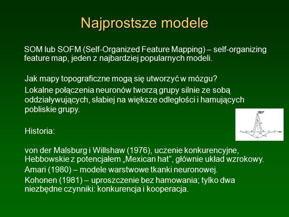 Najprostsze modele SOM lub SOFM (Self-Organized Feature Mapping) – self-organizing feature map, jeden z najbardziej popularnych modeli.