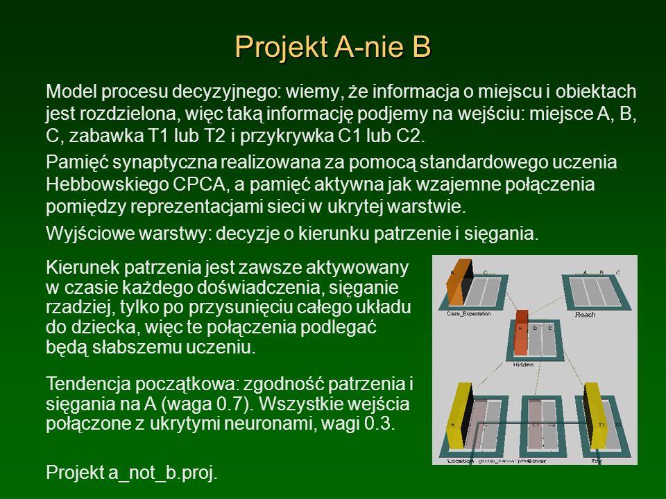 Projekt A-nie B