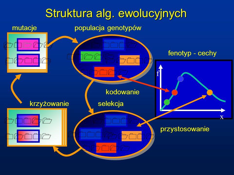 Struktura alg. ewolucyjnych