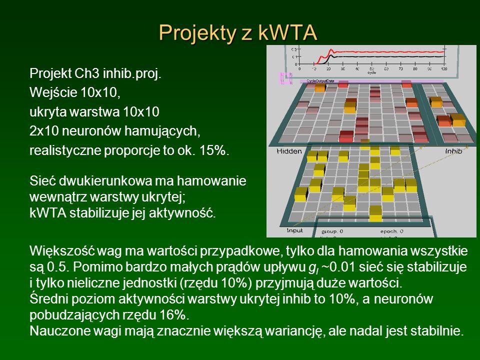 Projekty z kWTA Projekt Ch3 inhib.proj. Wejście 10x10,