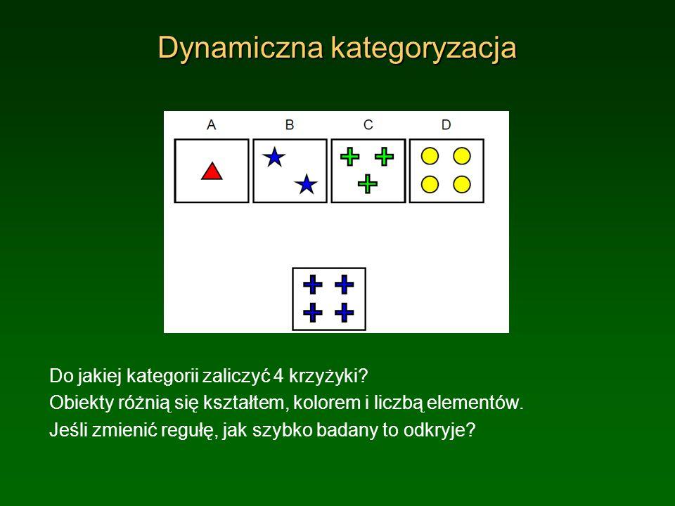 Dynamiczna kategoryzacja