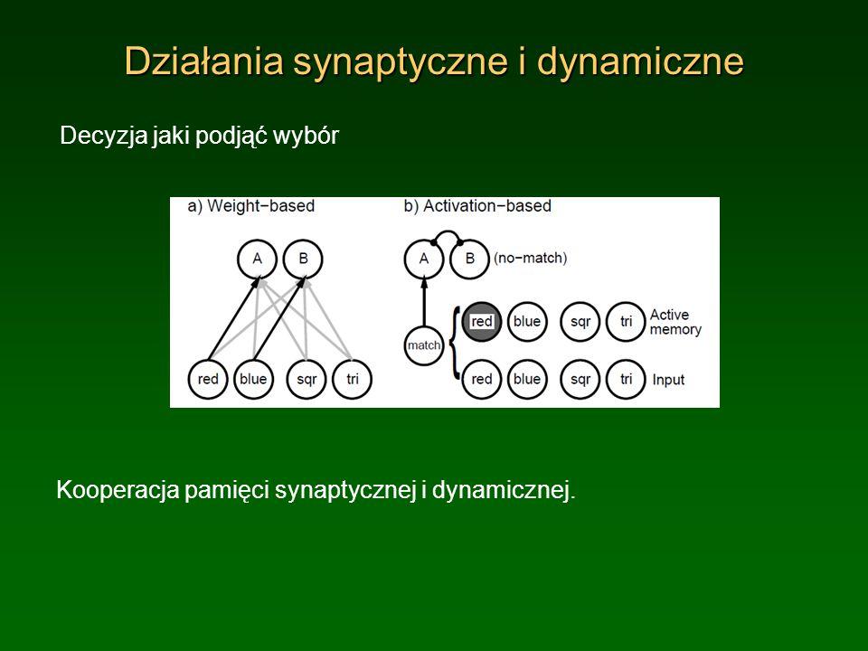 Działania synaptyczne i dynamiczne
