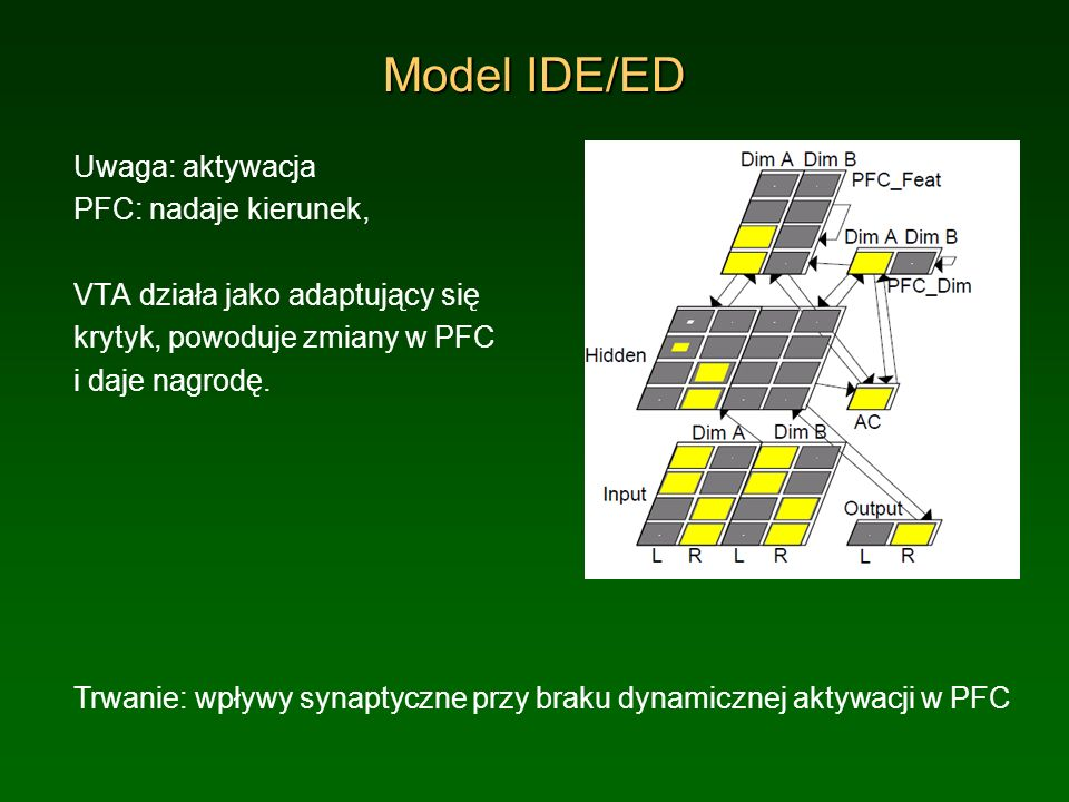 Model IDE/ED Uwaga: aktywacja PFC: nadaje kierunek,