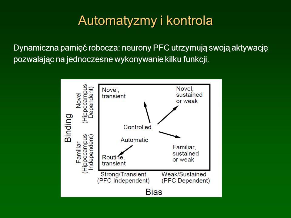 Automatyzmy i kontrola