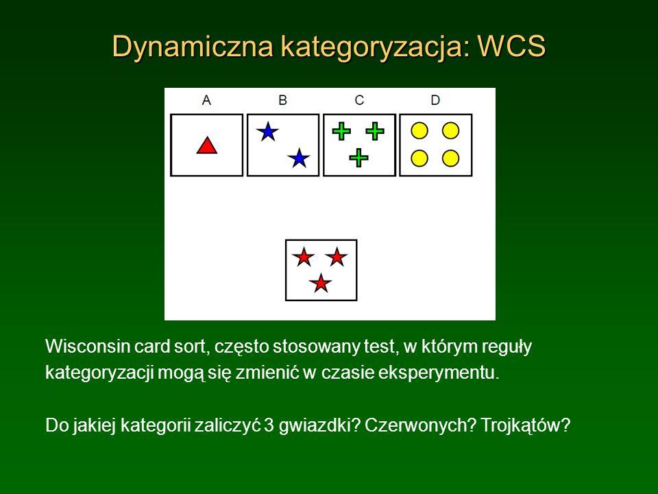 Dynamiczna kategoryzacja: WCS