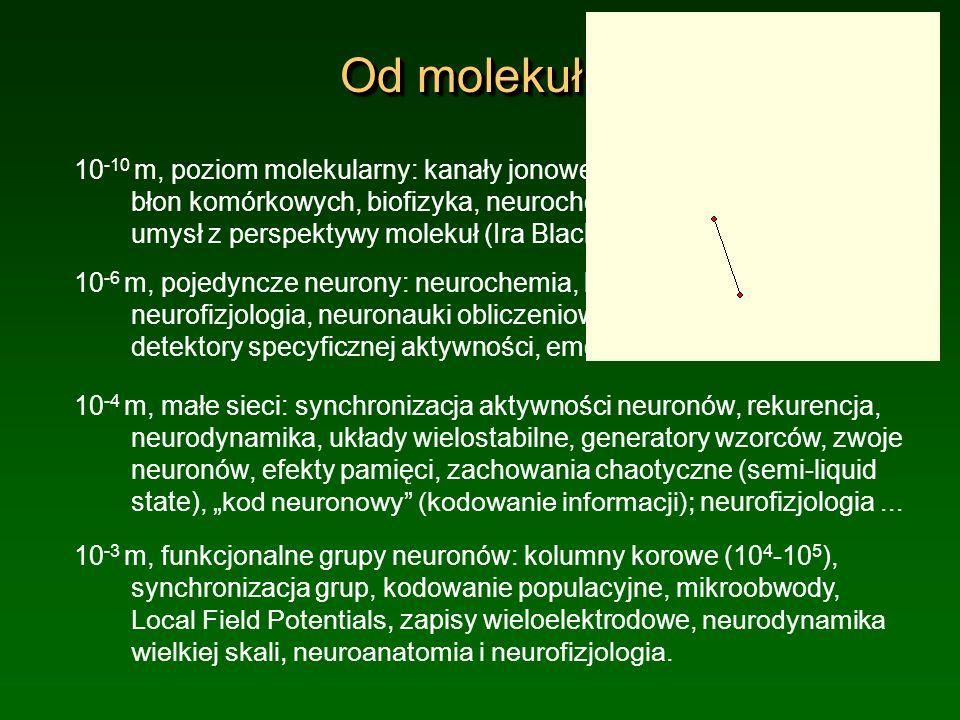 Od molekuł ...