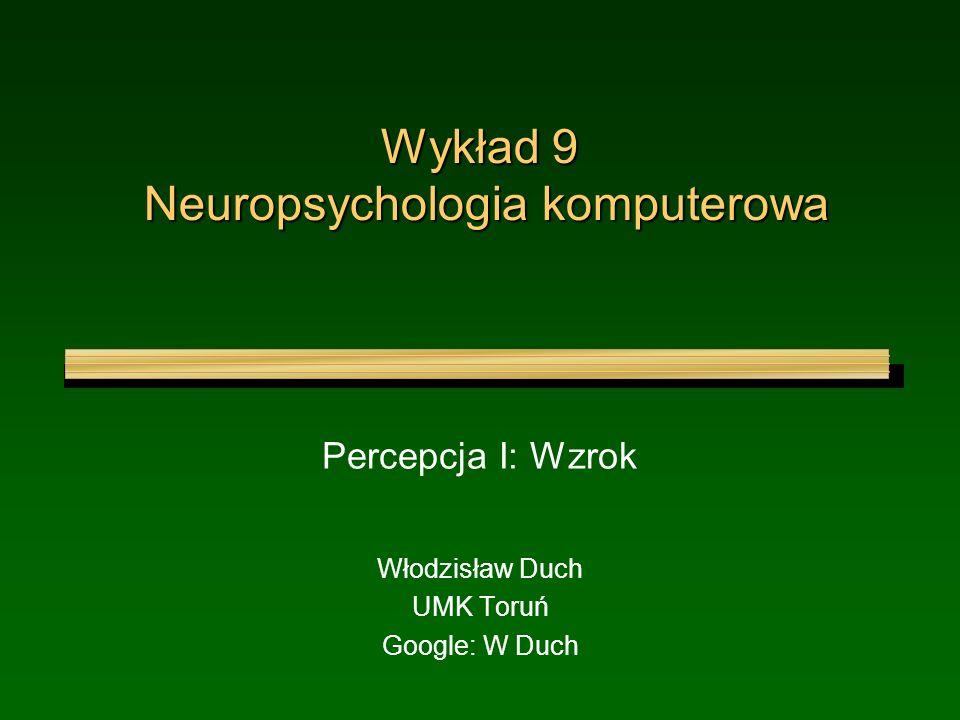 Wykład 9 Neuropsychologia komputerowa